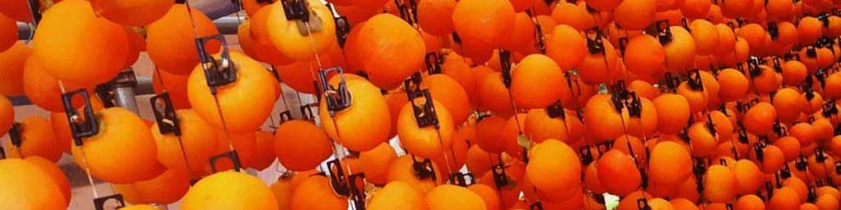 喬木村のオススメフルーツ 柿